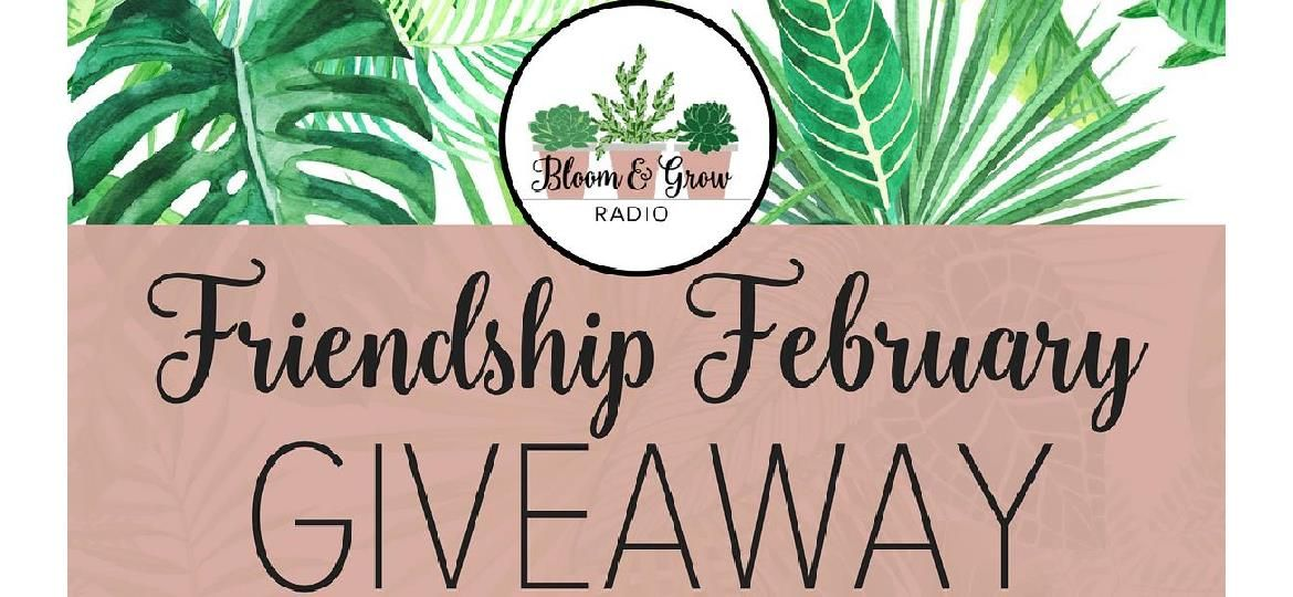 Friendship February Giveaway!