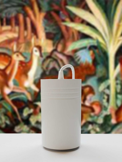 white-close-up-to-unit-with-jungle-painting[1]
