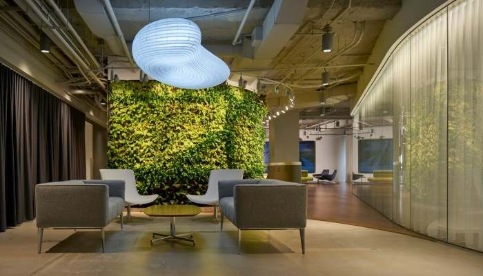 Why These Companies Are Adding Plants to Their Offices