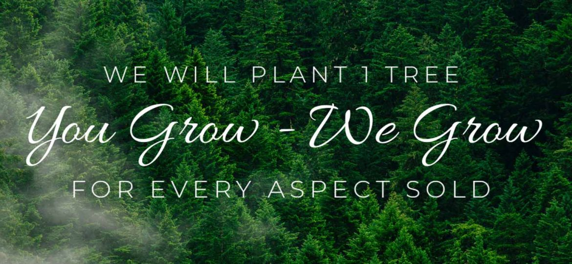 Why Every Aspect Plants 1 Tree This Month