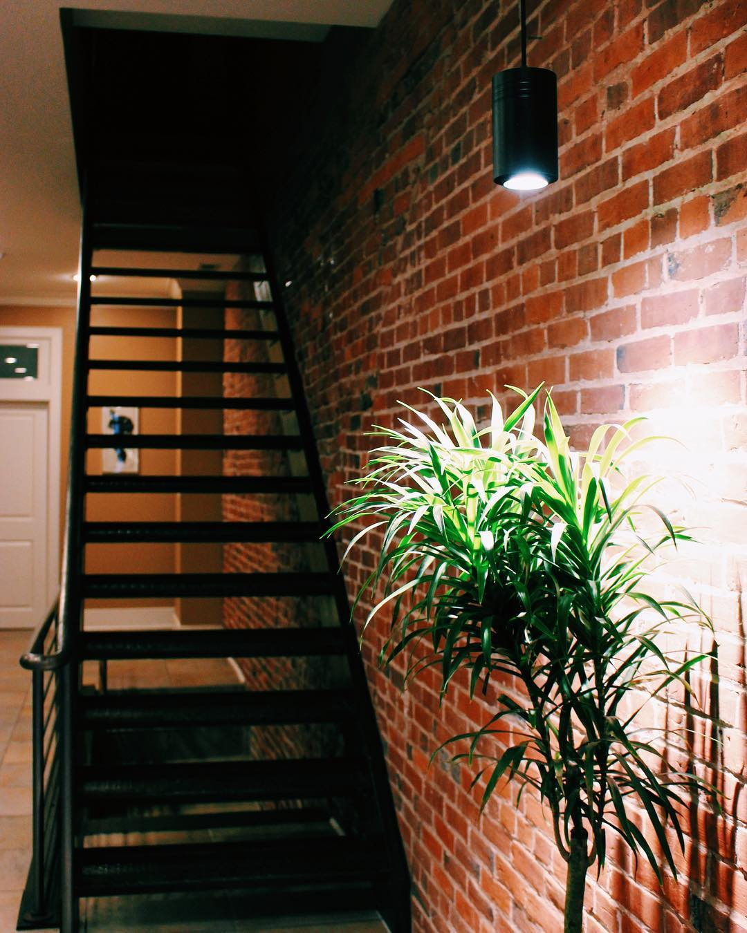Large Black Aspect™ Grow Light next to exposed brick