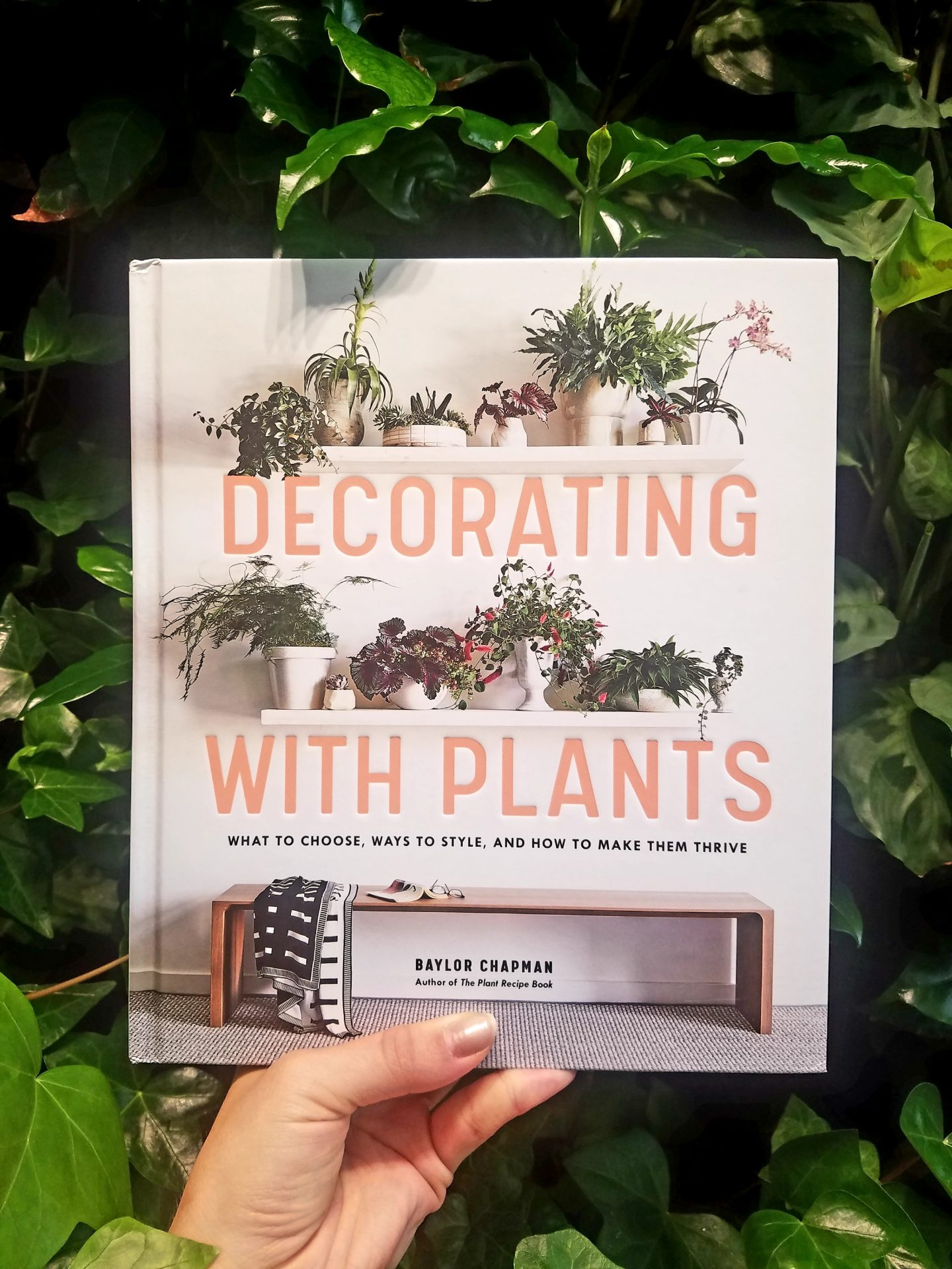 Decorating with Plants2