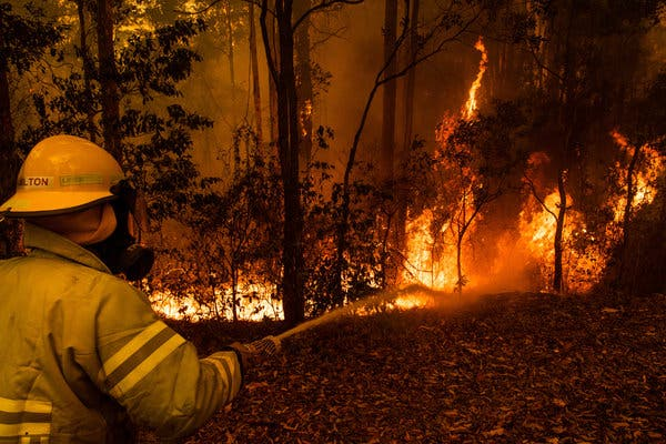 Fighting a fire in Tomerong on Saturday.Credit...Matthew Abbott for The New York Times