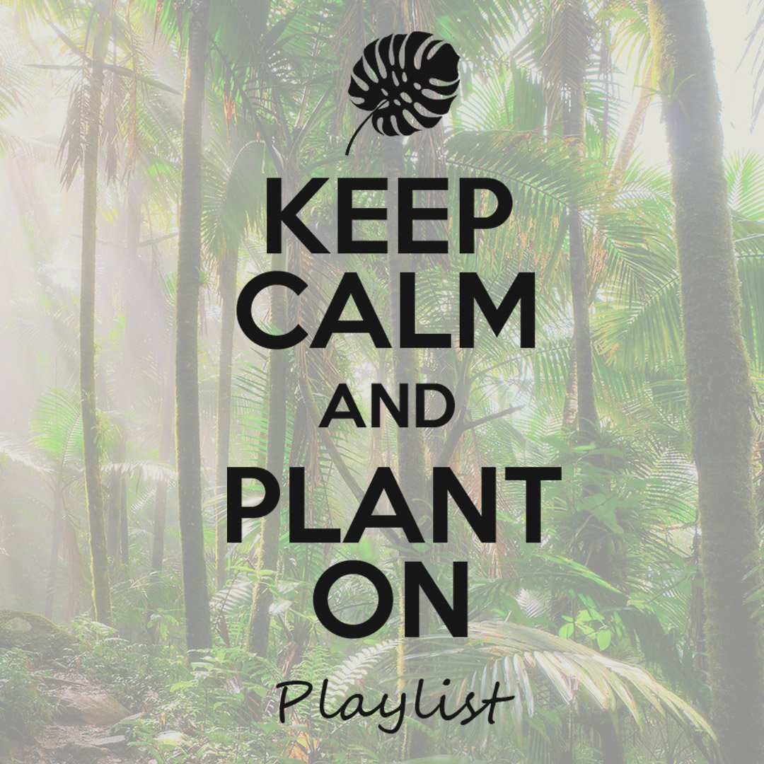 Official Plant Playlist for You and Your Plants!