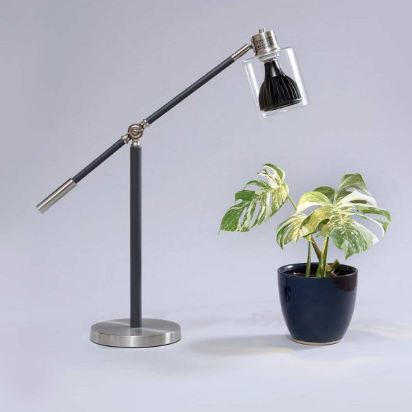 Desk Lamp Black Vita Monstera
