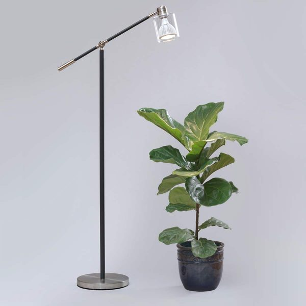 Standing Lamp White Vita Fiddle leaf fig