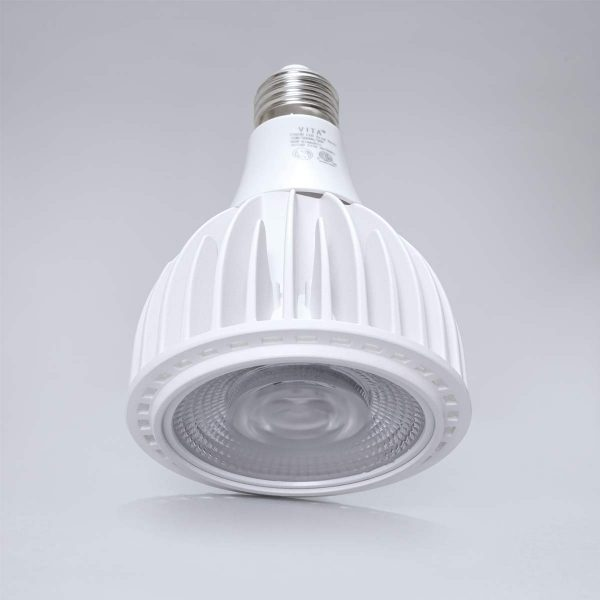 Vita Bulb White Lifted