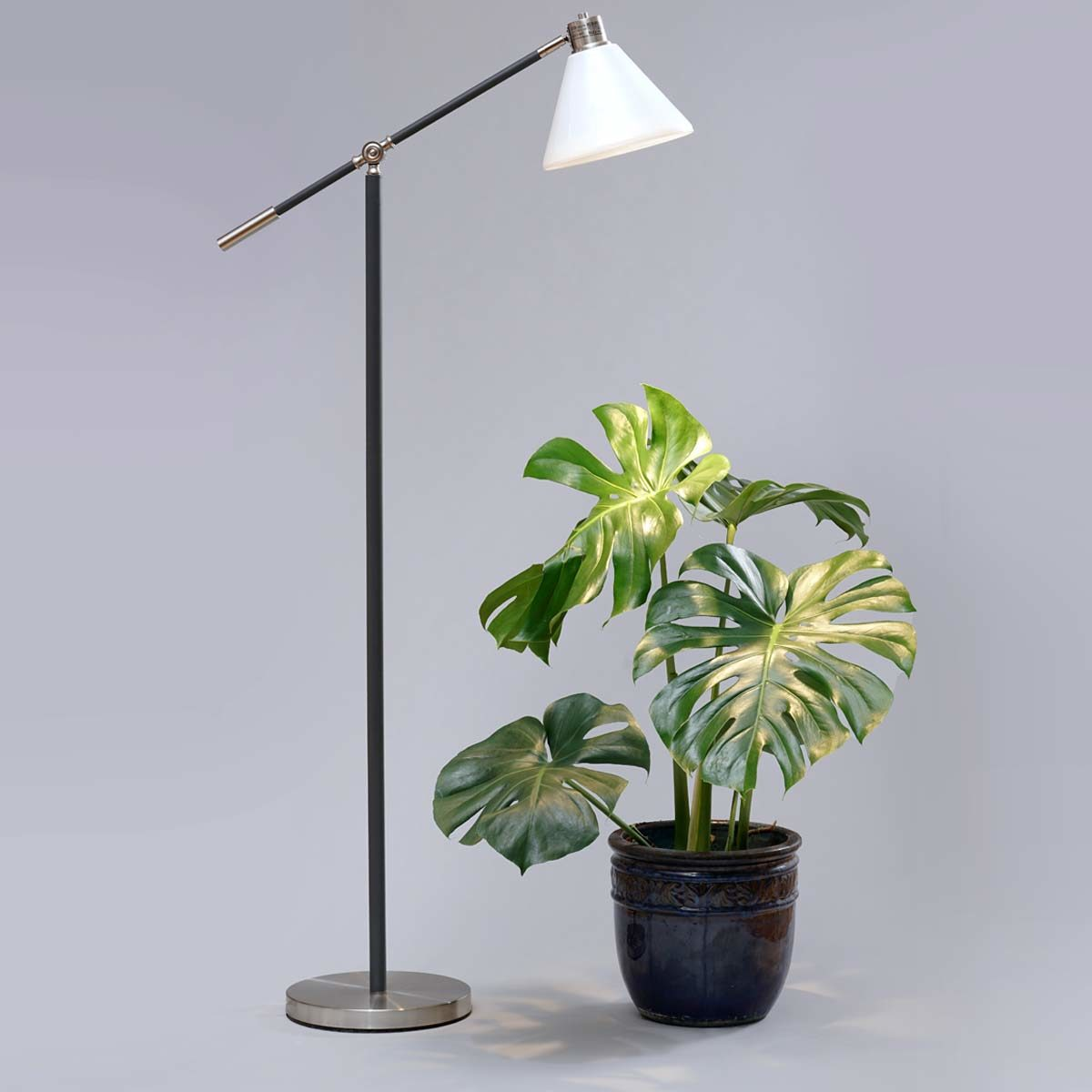 Standing-Lamp-Shade-Monsterajpg